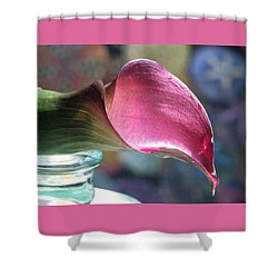 Drowsy Calla Lily Shower Curtain by Angela Davies