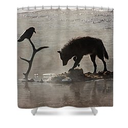 Druid Wolf And Raven Silhouette Shower Curtain