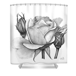 Drum Rose Shower Curtain by Patricia Hiltz