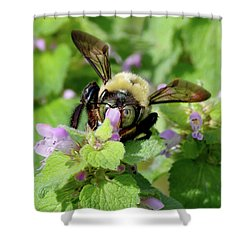 Drunk As A...bee? Shower Curtain