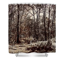 Shower Curtain featuring the photograph Dry Autumn Landscape Of A Vintage Woodland by Jorgo Photography - Wall Art Gallery