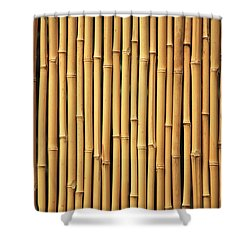 Dry Bamboo Rows Shower Curtain by Brandon Tabiolo - Printscapes