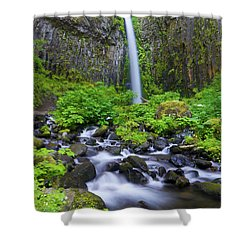 Dry Creek Falls Shower Curtain