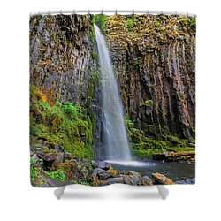 Dry Creek Falls Shower Curtain by David Gn