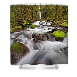 Dry Creek Falls In Spring Shower Curtain by David Gn