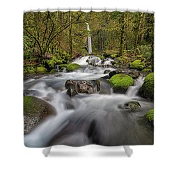 Dry Creek Falls In Springtime Shower Curtain by David Gn