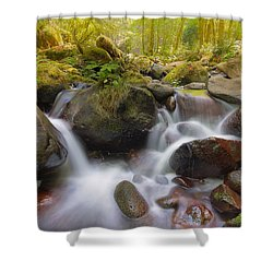 Dry Creek II Shower Curtain by David Gn