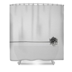 Dry Flower - Black And White Art Photo Shower Curtain