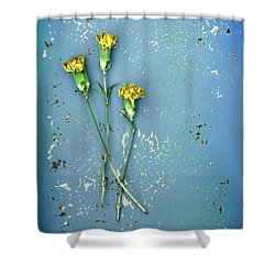 Shower Curtain featuring the photograph Dry Flowers On Blue by Jill Battaglia