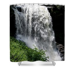 Dry Falls 10 Shower Curtain