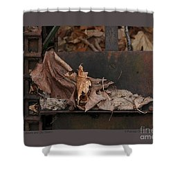 Shower Curtain featuring the photograph Dry Leaves And Old Steel-i by Patricia Overmoyer