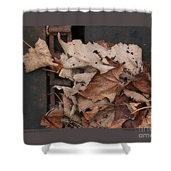 Shower Curtain featuring the photograph Dry Leaves And Old Steel-ii by Patricia Overmoyer