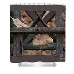 Shower Curtain featuring the photograph Dry Leaves And Old Steel-iii by Patricia Overmoyer