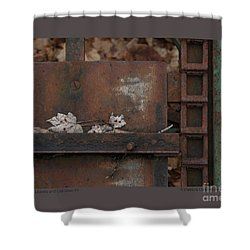 Shower Curtain featuring the photograph Dry Leaves And Old Steel-iv by Patricia Overmoyer