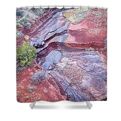 Dry Stream Canyon Areial View Shower Curtain