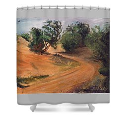 Dry Wash Road Shower Curtain by Sherril Porter