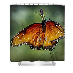Shower Curtain featuring the photograph Drying Wings by Elaine Malott