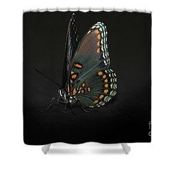 Drying Wings Shower Curtain by Judy Hall-Folde