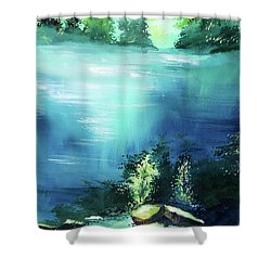Shower Curtain featuring the painting Duality by Anil Nene
