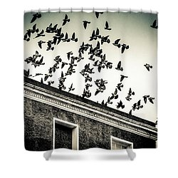Flight Over Oscar Wilde's Hood, Dublin Shower Curtain