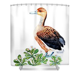 Duck And Daisies Shower Curtain by Sandra Moore