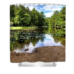 Shower Curtain featuring the photograph Duck At Covewood by David Patterson