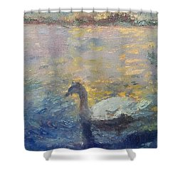 Duck Shower Curtain by Brian Kardell