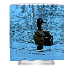 Duck Looking To The Right Shower Curtain by John Rossman