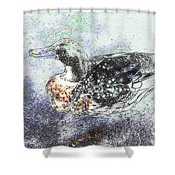 Shower Curtain featuring the photograph Duck With Fine Plumage by Nareeta Martin