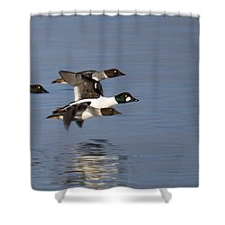 Duckin Out Shower Curtain