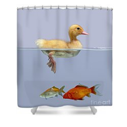 Duckling And Goldfish Shower Curtain by Jane Burton