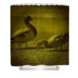 Ducks #3 Shower Curtain