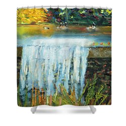 Shower Curtain featuring the painting Ducks And Waterfall by Michael Daniels