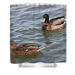 Ducks By The River Shower Curtain