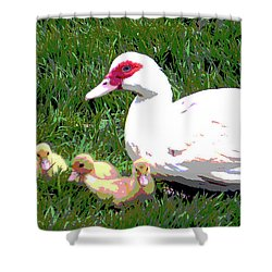 Shower Curtain featuring the mixed media Ducks by Charles Shoup