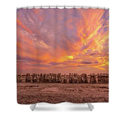 Shower Curtain featuring the photograph Ducks In A  Row by Peter Tellone
