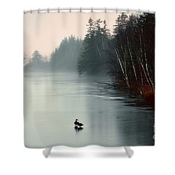 Ducks On A Frozen Pond Shower Curtain
