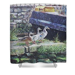 Ducks On Dockside Shower Curtain by Martin Davey