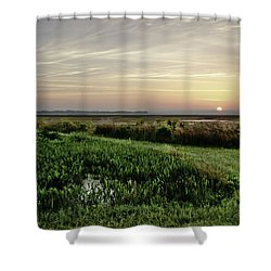 Due East Shower Curtain by Phill Doherty