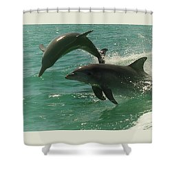 Duet Shower Curtain by Cassandra Buckley