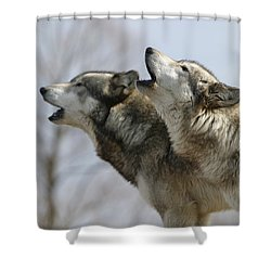 Duet Howl Shower Curtain