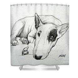 Duke Shower Curtain