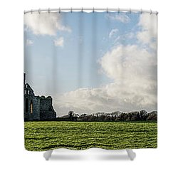 Dunbrody Abbey Shower Curtain by Martina Fagan