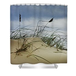 Dune And Beach Grass Shower Curtain by Randall Nyhof