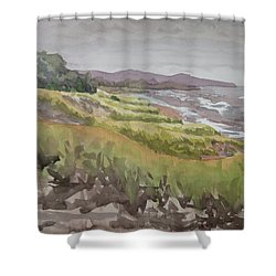 Dune Grass Field Shower Curtain by Bethany Lee