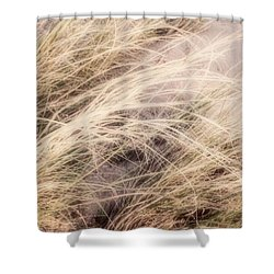 Dune Grass Nature Photography Shower Curtain