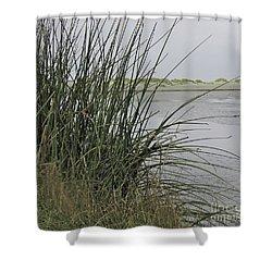 Bodega Dunes #2 Shower Curtain