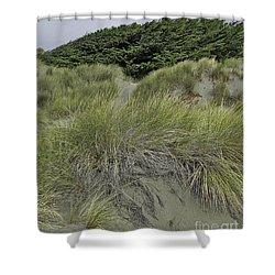 Bodega Dunes #3 Shower Curtain