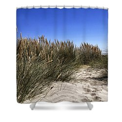 Shower Curtain featuring the photograph Dune Grasses by Shirley Mitchell