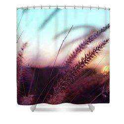 Dune Scape Shower Curtain